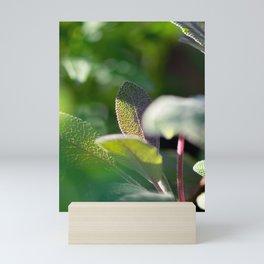 Glowing Purple and Green Sage Leaf Mini Art Print