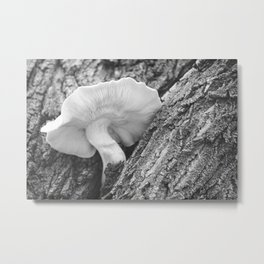 Tree Trunk Mushroom 2 Metal Print
