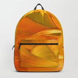 Tyr Backpack