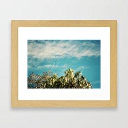 Hello willow. Framed Art Print