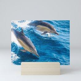 Ridding The Waves Mini Art Print