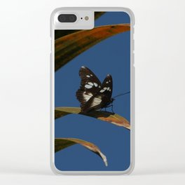Common wanderer Clear iPhone Case