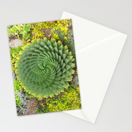 Swirly Succulent Stationery Cards