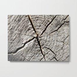 Dry old wood Metal Print