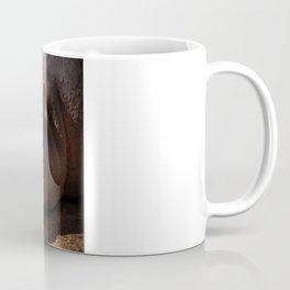 Family photo Coffee Mug