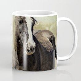 Feldspar and Ohanzee Coffee Mug