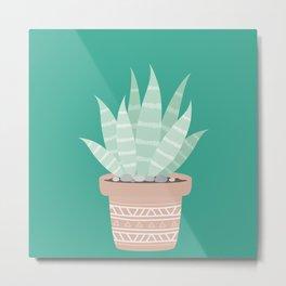 Cactus Suculents Plants Metal Print