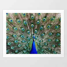 Vibrant Display Art Print