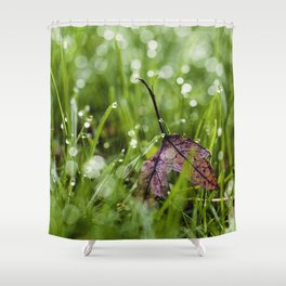 there Shower Curtain