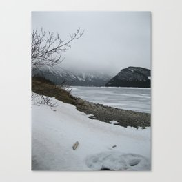 Cold Beauty 3 Canvas Print