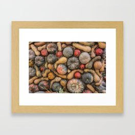 Pumpkins Framed Art Print