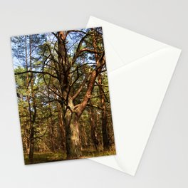 Sunny SUMMER FOREST Stationery Cards