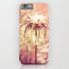Recalling the summer Slim Case iPhone 6s