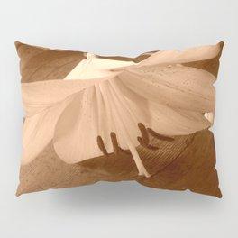 way back when Pillow Sham