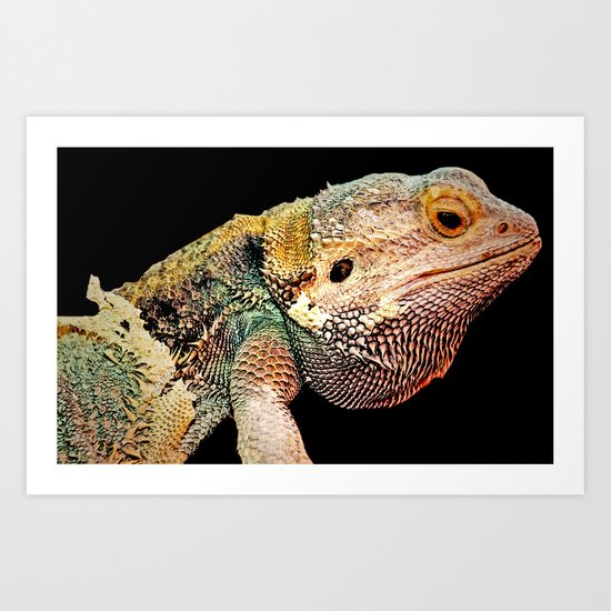 BEARDED DRAGON Art Print