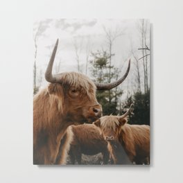Don't Mess With Us Metal Print