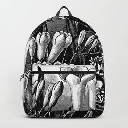 Freesias 1913 Backpack