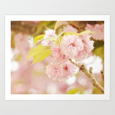 Pink Flower Photography | Shabby Chic Blossoms Art Print