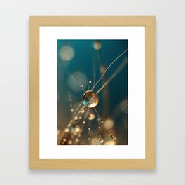 Cactus Starlite Drops Framed Art Print