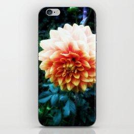 Delightful Dahlia iPhone Skin