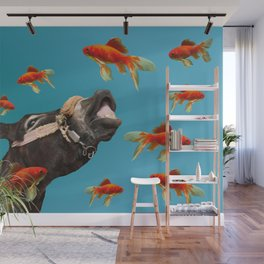 Donkey with Goldfishes  Wall Mural