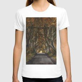 Dark Hedges alley in autumn T-shirt