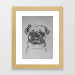 Smug Pug Framed Art Print