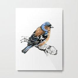 Chirpy Finch Metal Print