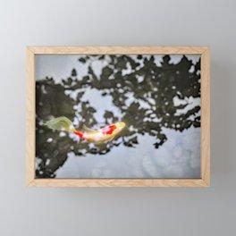 Koi in Japanese Maple Shadows Framed Mini Art Print