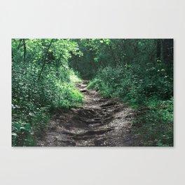 Woods III Canvas Print
