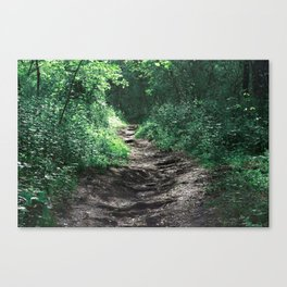 Woods III Canvas Print