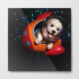 The Curious Dog & The Rocket Metal Print