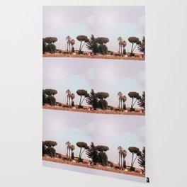 Across the Red Desert Wallpaper