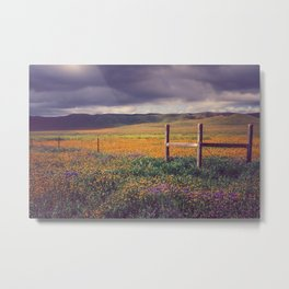 Light on the Plain Metal Print