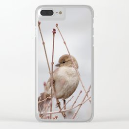 Spring Sparrow Clear iPhone Case