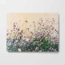 Flowers in Prague Metal Print