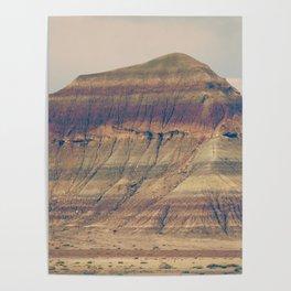 Petrified Desert Poster