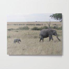 Follow Me, Kenya 2009 Metal Print