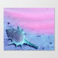 shell Canvas Prints featuring Shell by Elena Indolfi
