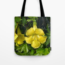 Cat's Claws Vines Tote Bag