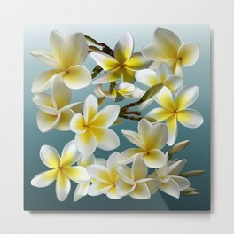 Plumeria on Blue Metal Print