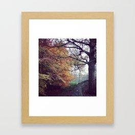 Shibden Wood Framed Art Print