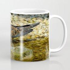 European Turtle Dove (Streptopelia turtur) Coffee Mug