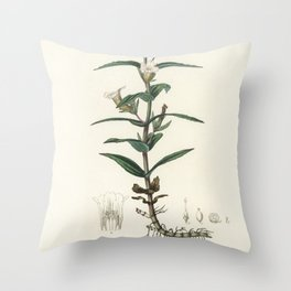 Gratiola officinalis  from Medical Botany (1836) by John Stephenson and James Morss Churchill Throw Pillow