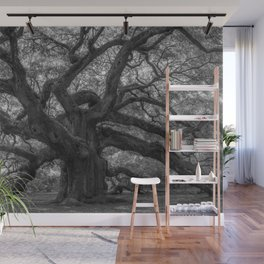 1,500 Year Old Angel Oak Tree of Charleston, South Carolina black and white photography / photograph Wall Mural