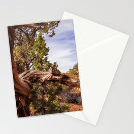 Unique desert beauty at Kodachrome Park in Utah Stationery Cards