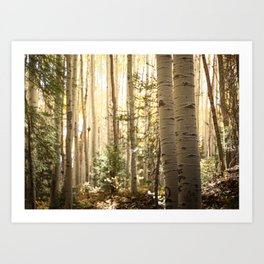 Light Among the Aspens x Rustic Mountain Art Art Print
