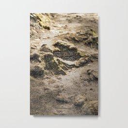Soil Metal Print