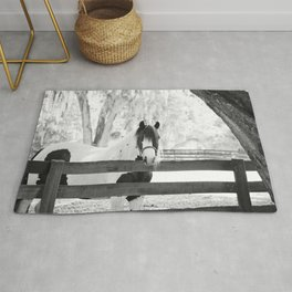 Gypsy Vanner Beauty Rug
