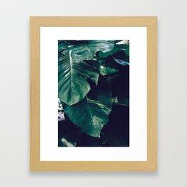 Green Leaves - Bali - Travel Photography Framed Art Print